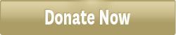 donate-button-web-1