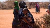 Unicef Ethiopia Foreign Aid