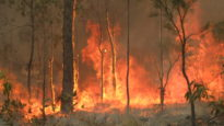 bushfire in Queensland