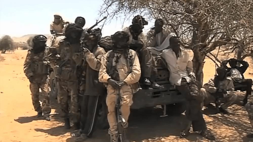 Sudanese Government militia in Darfur