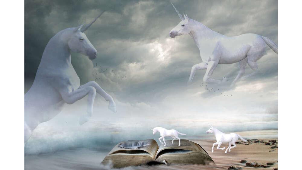 Unicorns sea landscape drawing